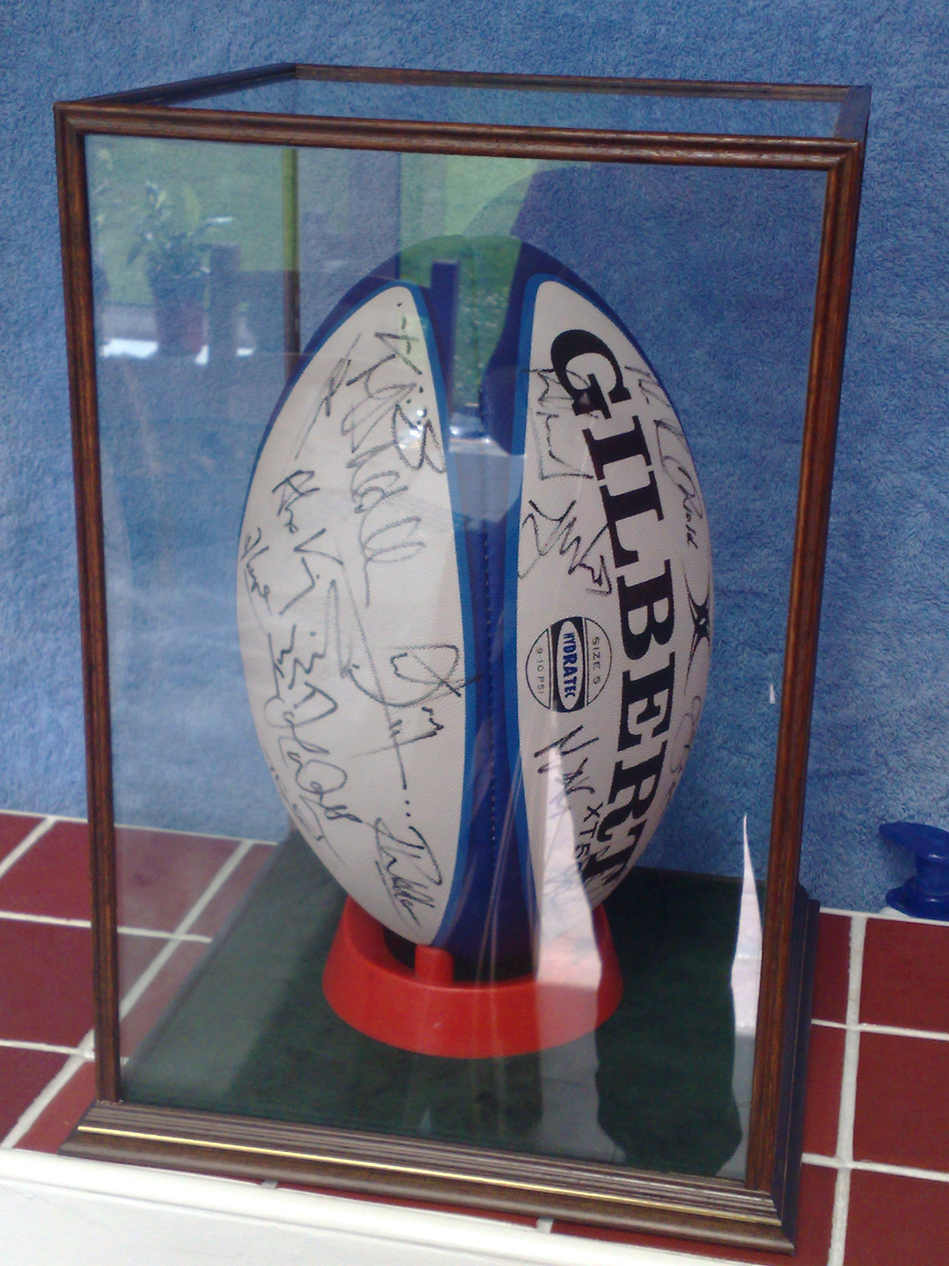 Signed rugby ball in a DSC Display Case
