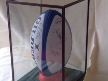 Signed Rugby Ball Display Case