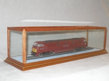 Radcliffe Case with Train and Track