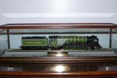 Train Display Case Glass