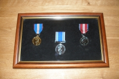 Bespoke Medal Display Case