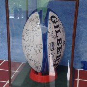 Rugby ball in display case
